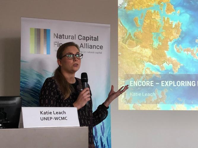Katie Leach, Senior Programme Officer, UNEP World Conservation Monitoring Centre (WCMC)