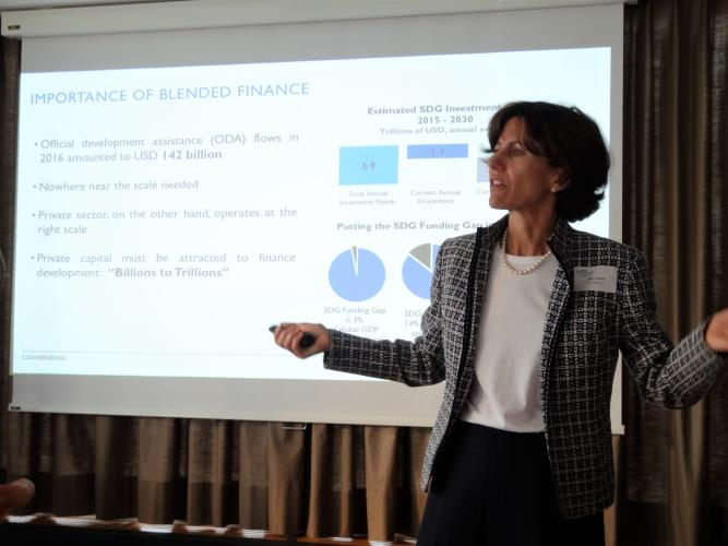 Joan Larrea, CEO, Convergence, gives insight into blended finance